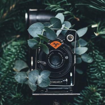 Foto- & Videografie